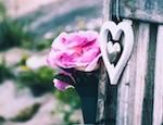 Flower_Thumb